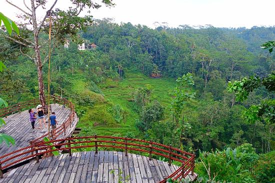 Kintamani Day Trip - Total Bali Activities